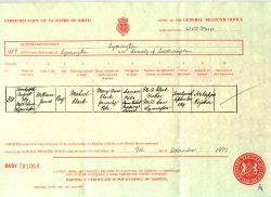 Sovereign Ancestry Lincolnshire - Birth Certificate