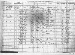 Large View of 1851 Census