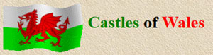 The Castles of Wales Website